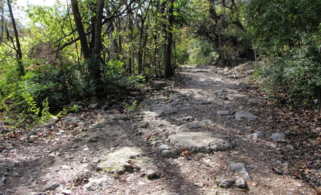 barton creek mountain bike trail