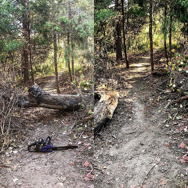 Little before and after trail maintenance, BEFORE it gets too hot. Thanks to whoever took care of ALL the vines that were on the log!